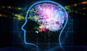 Which type of intelligence predominates in you?